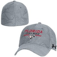 Hat,UA,Grey, Blitzing L/XL