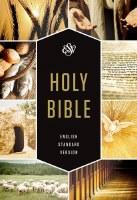 ESV Textbook Bible - Paperback