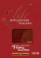 NIV Life Application Study Bible w/CD - Brown