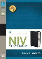 NIV Study Bible - Black Bonded Leather