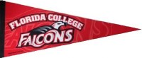 Florida College Falcons Pennant