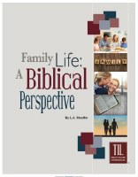 Family Life: A Biblical Perspective (Truth in Life)