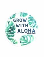 Car Coaster Grow Aloha
