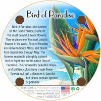 Cork Coaster Bird of Paradise