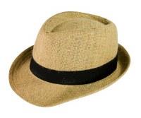 Hat Fedora Hemp
