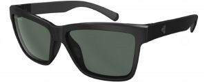 Norvan Matte Black Polarized