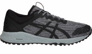 Alpine XT Grey/Black 8.5