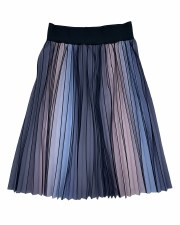 Printed Pleated Skirt Ombre 10