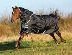 Amigo Black /Silver Stock Horse Lite Turnout