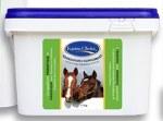 Equine Choice Generation 2 Probiotic & Prebiotic Supplement