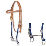 Loomis Gag Bit with Headstall