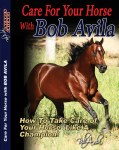 Bob Avila - Care for Your Horse