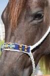 Beaded Cowboy Braid Halter