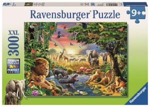 Evening at the Waterhole 300pc
