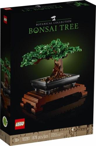Bonsai Tree 10281