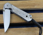Chris Reeve Small Sebenza 21 Drop Point with Mediterranean CGG Titanium Handle