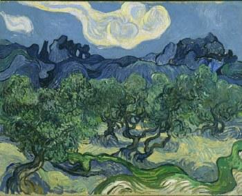 "Vincent van Gogh: The Olive Trees, 1889 - 11"" x 14"""