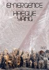 Haegue Yang: Emergence
