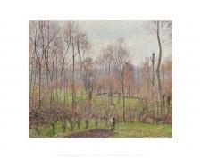 Camille Pissarro: Peupliers, temps gris, Éragny - 11x14