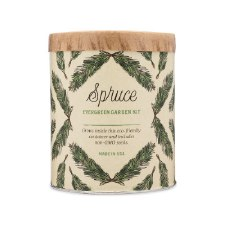 Modern Sprout - Spruce Grow Kit