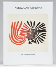 Kenojuak Ashevak: The Enchanted Owl - Notecard Box