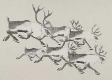 Tim Pitiulak: Caribou Migration Matted Print