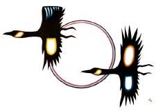 David Brooks: Birds in Flight Matted Print