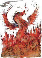 Colleen Gray: Fire Dragon Matted Print