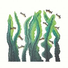 Cee Pootoogook: Kelp Garden Matted Print