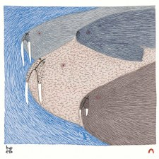 Teevee Ningeokuluk: Swimming Walrus Matted Print