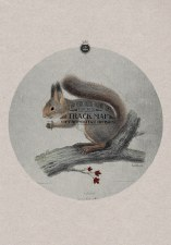 State Goods: Bellwoods Belle