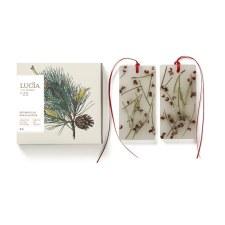 Lucia Les Saisons Douglas Pine Wax Tablets