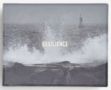 Card Set: Resilience