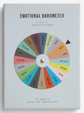 Card Set: Emotional Barometer