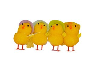 4pk of Chicks