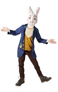 Mr Rabbit Costume