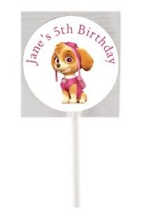 15PK Skye Paw Patrol Lollipops