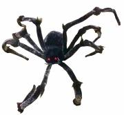 170cm Black And Grey Spider