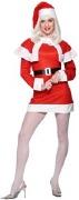 Lady Santa Costume