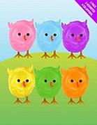 3 Pack Of Multi Chicks