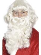 Christmas Santa Beard