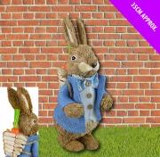 35cm Bunny Boy