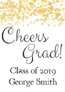 4PK Graduation Wine Labels