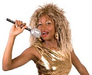 Tina Turner Wig