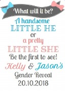 4PK Gender Reveal Wine Labels