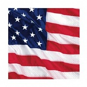 American Flying Colours Napkin