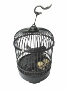 Animated Raven In Cage