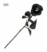 Black Rose with Eye