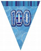 Blue 100th Birthday Bunting