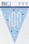 Blue Glitz 100th Bunting